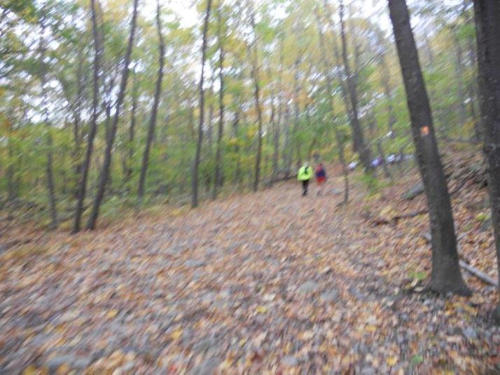 Mountain Madness 50K nj trail ultra course (2)