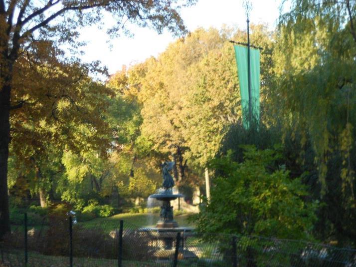 2011 New York City Marathon Footlocker Five Boro Challenge central Park (1)