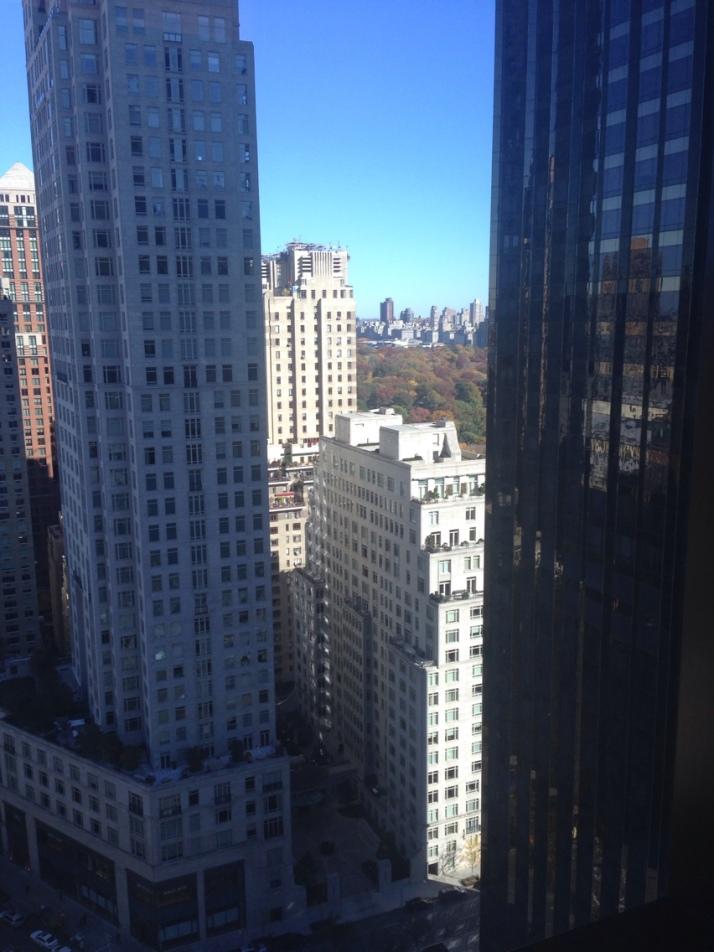 new york city marathon elizabeth maiuolo nyrr (00)