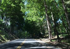 Bear Mountain Buick Verano drivetorun (20)