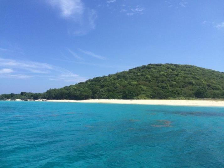 bucks island caribbean sea adventures snorkeling (2)