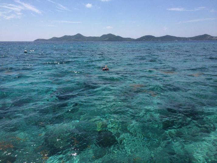 bucks island caribbean sea adventures snorkeling (3)