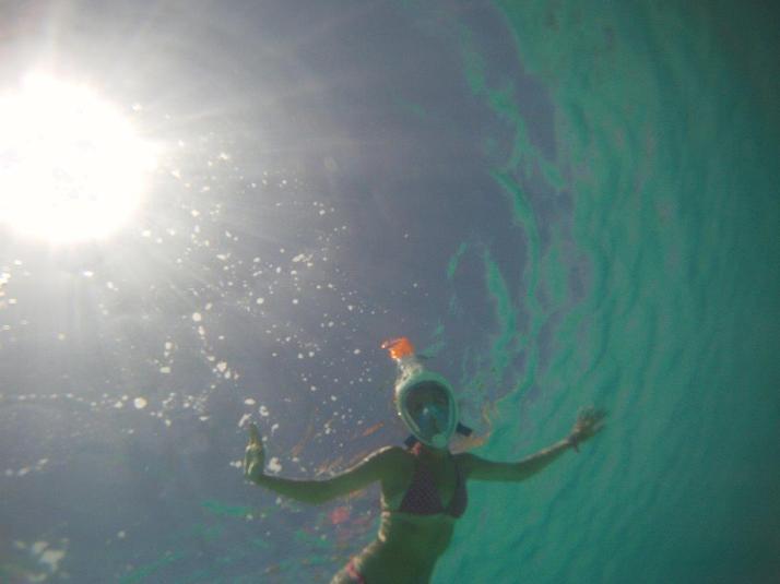 st croix bucks island snorkeling caribbean sea adventures (13)