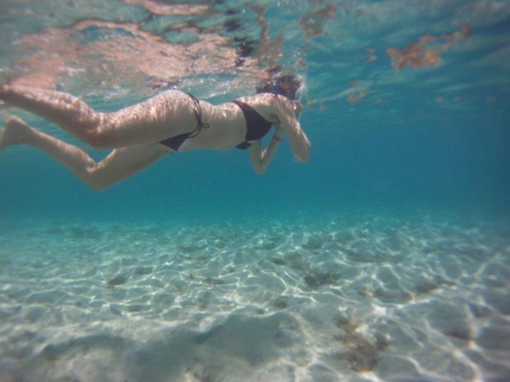 st croix bucks island snorkeling caribbean sea adventures (4)
