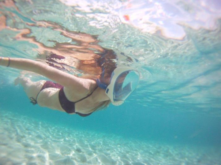 st croix bucks island snorkeling caribbean sea adventures (5)