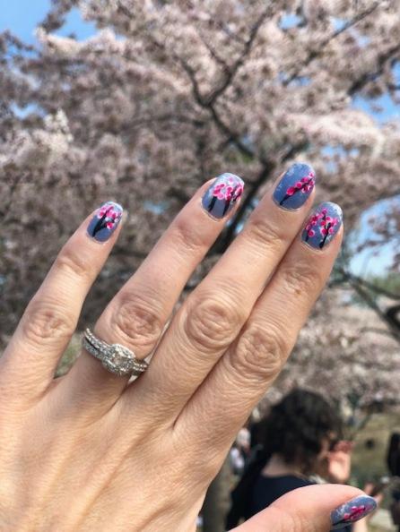 2019 credit union cherry blossom 10 mile race Washington DC 3